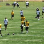Troy Polamalu Practice Photo