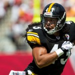 Troy-Polamalu in Action