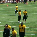 Polamalu & Ryan Clark